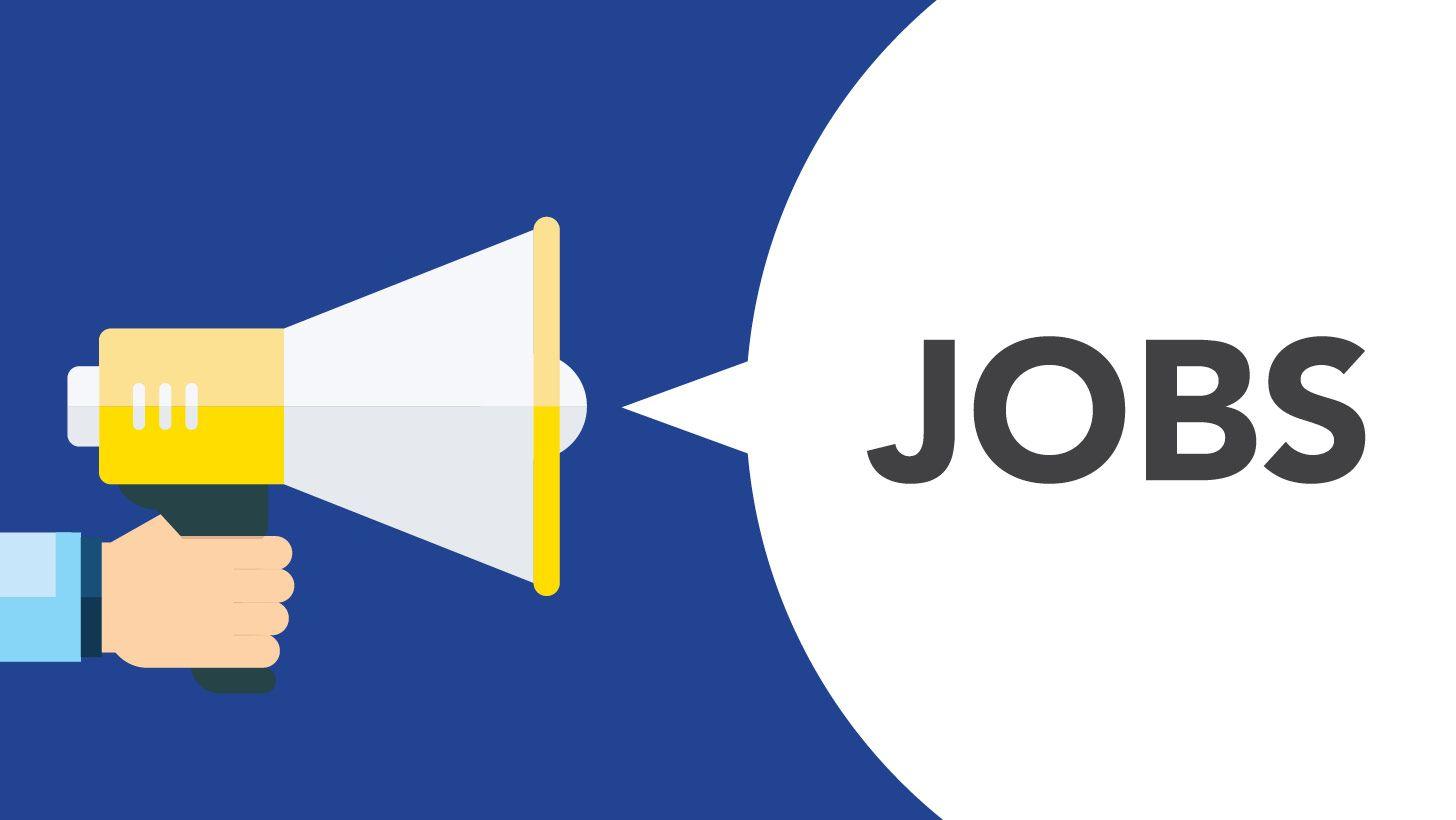 Advocate job vacancy for trademark services at Mukherjee Nagar Delhi